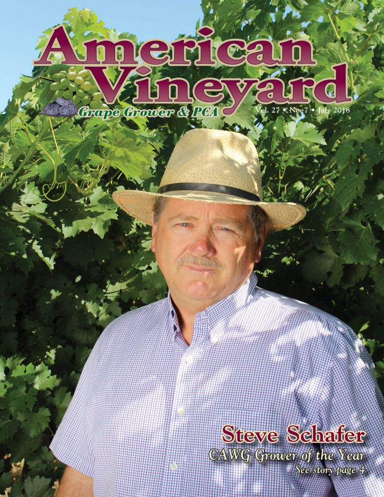 American Vineyard Magazine July 2018 Issue